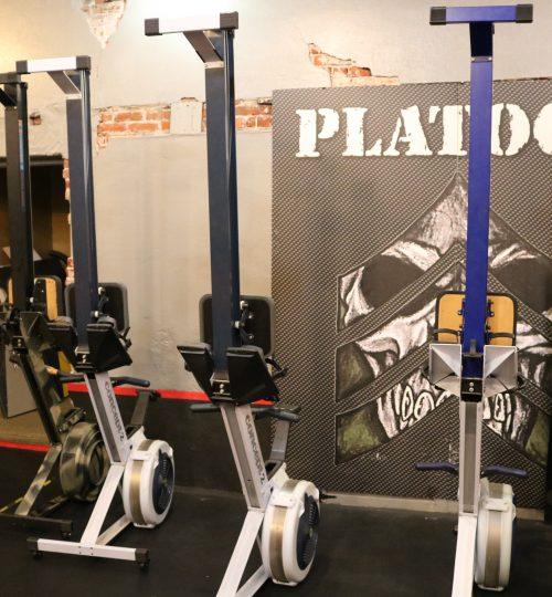 Rowing Machines at Platoon Fitness Bryn Mawr.